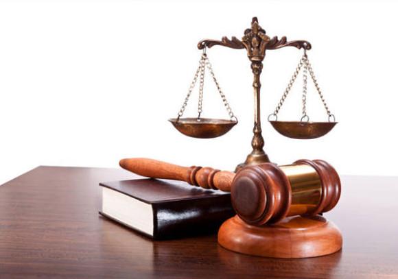 Бесплатные юридические консультации в день юриста!